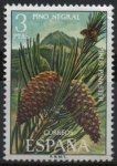 Stamps Spain -  Pino negral