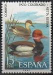 Sellos de Europa - España -  Pato Colorado