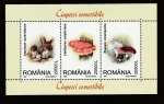 Sellos de Europa - Rumania -  Russula xeranpelina