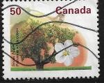 Sellos del Mundo : America : Canadá : Manzano Mc Intosh