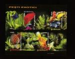 Stamps Romania -  Carassius auratus