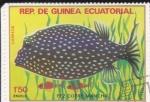 Sellos de Africa - Guinea Ecuatorial -  PEZ COFRE
