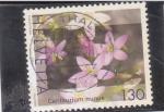 Stamps Switzerland -  flores-