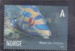 Stamps : Europe : Norway :  PEZ- labrus bimaculatus