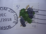 Stamps America - United States -  Uvas - Racimo de Uvas.Serie: Frutas.