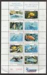Stamps America - Costa Rica -  Pájaro loco de patas rojas