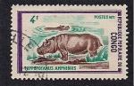 Stamps Democratic Republic of the Congo -  Hipopotamo