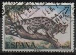 Stamps Spain -  Fauna Hispanica Gineta