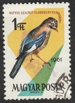 Stamps Hungary -  1481 - Ave de bosque