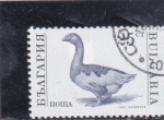 Stamps Bulgaria -  ANADE