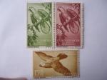 Stamps Spain -  Guinea Española - Loro Gris (Psittacus erithacus)- Pro-Indigenas 1957