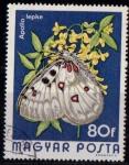 de Europa - Hungría -  2396 - Mariposa parnassius apollo