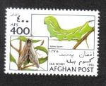Stamps : Asia : Afghanistan :  Gusanos de Seda, Polilla Halcón Privada (Sphinx ligustri)