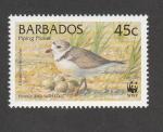 Stamps Barbados -  Charadrius melodus