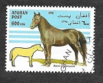 Stamps : Asia : Afghanistan :  Yt1516 - Caballo