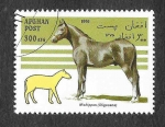 Stamps : Asia : Afghanistan :  Yt1513 - Caballo