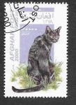 Stamps Afghanistan -  Mi1941 - Gato