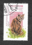 Stamps Afghanistan -  Mi1942 - Gato