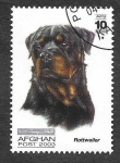 Stamps Afghanistan -  Perro