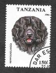 Stamps Tanzania -  Perro