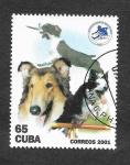 Sellos del Mundo : America : Cuba : 4141 - Federación Cubana de Deportes Caninos
