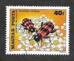 Stamps : Europe : Hungary :  2625 - Insecto y Flor