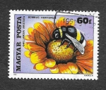 Stamps : Europe : Hungary :  2626 - Insecto y Flor