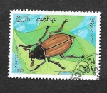 Stamps : Asia : Laos :  1244 - Insecto