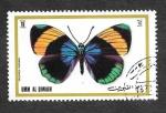 Sellos del Mundo : Asia : Emiratos_Árabes_Unidos : Mi625A - Mariposas