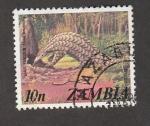 Stamps Zambia -  Armadillo