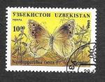 Sellos de Asia - Uzbekistán -  Mariposa