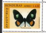 Stamps : America : Honduras :  Iphidamas Cattleheart (Parides iphidamas)