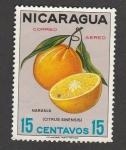 Stamps Nicaragua -  Naranja