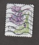 Sellos de Europa - Irlanda -  Pinguiebla grandiflora