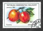 Stamps Madagascar -  1066 - Pomelo