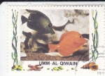 Stamps of the world : United Arab Emirates :  PECES TROPICALES