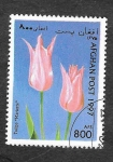 Stamps Afghanistan -  Tulipan