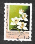 Stamps : Africa : Somalia :  Cymbidium Rosanna