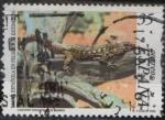 Stamps of the world : Spain :  Lagarto Gigante d´el Hierro Galolotia