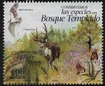 Stamps : America : Mexico :  Bosque templado