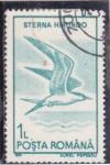 Stamps : Europe : Romania :  AVE- sterna hirundo