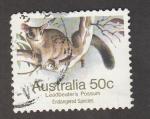 Stamps Australia -  Zarigüeñas