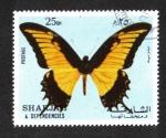 Sellos del Mundo : Asia : Emiratos_Árabes_Unidos : Mariposa