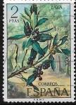 Sellos de Europa - España -  Lora de Islas Canarias, Faya (Mirica faya)
