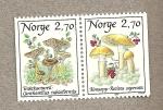 Sellos del Mundo : Europa : Noruega : Setas
