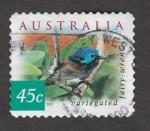Sellos de Oceania - Australia -  Ave Malurus cyaneus