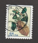 Stamps United States -  Citrus médica