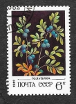Stamps : Europe : Russia :  5024 - Arándano