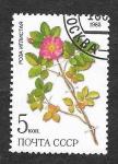Stamps : Europe : Russia :  5381 - Plantas Medicinales
