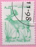 Stamps : Asia : Afghanistan :  Dama dama
